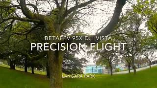 Precision Flight - BetaFPV 95x Dji Vista
