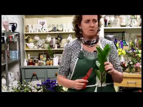 My RODE Reel Maura's Cottage Flowers BTS