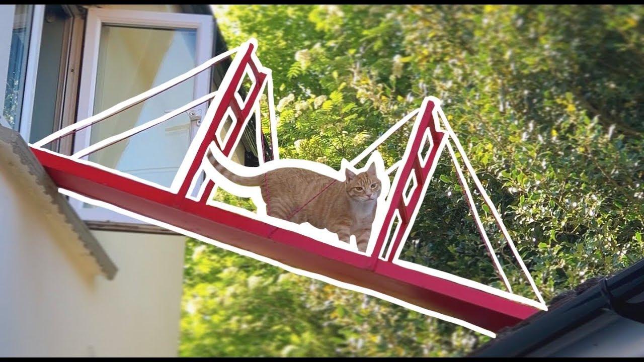 Англичанин построил мост для своего любимого кота