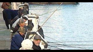 В Геленджике в разгаре сезон осенней рыбалки