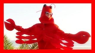 🦐💔 Lobster Dating