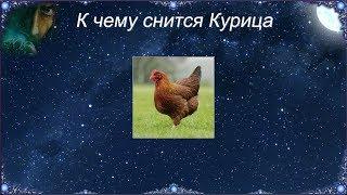 К чему снятся курица которая клюется