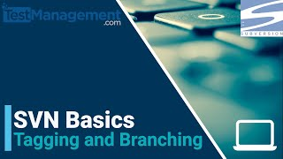 SVNBasics-TaggingandBranching
