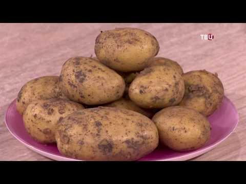 Можно ли есть картофель и похудеть? Диетолог Лидия Ионова развенчает миф о картофеле.