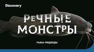 Рыбы-людоеды | Речные монстры | Discovery Channel