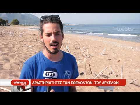 """Δραστηριότητες των εθελοντών του """"ΑΡΧΕΛΩΝ""""  28/06/2019   ΕΡΤ"""