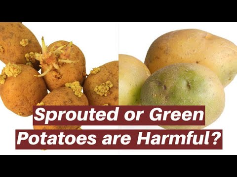 , title : 'Is it safe to eat green or sprouted potatoes?