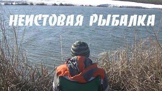 Отчеты о рыбалке на оке рязанская область 2020