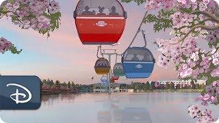 A Look at Disney Skyliner   Walt Disney World