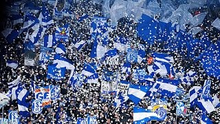 BEST OF FC Schalke 04 Fans [HD] || 2017