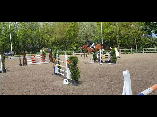 Mother I'm Special Power SIH in a 1.35m Class
