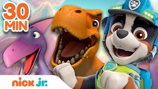 PAW Patrol Dino Rescue 30 MINUTE MARATHON! | Nick Jr.