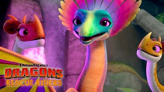 The Singing Songwing Dragon | DRAGONS RESCUE RIDERS | NETFLIX