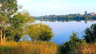 Отличная фидерная рыбалка на озере в августе!