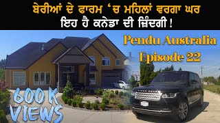 Blue Berry Farm in Canada   Pendu Australia   Punjabi Travel Show   Episode 22