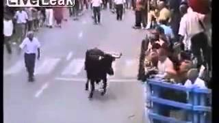 The Old Man and the Bull