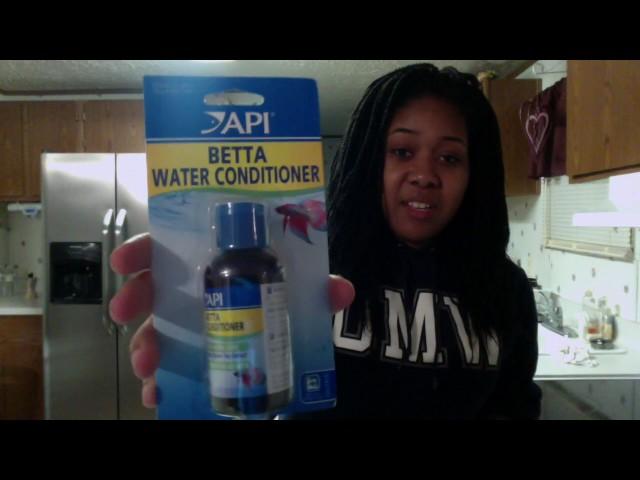Vlog: Setting up my betta fish tank