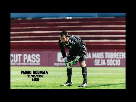 Pedro Gouveia - Highlights