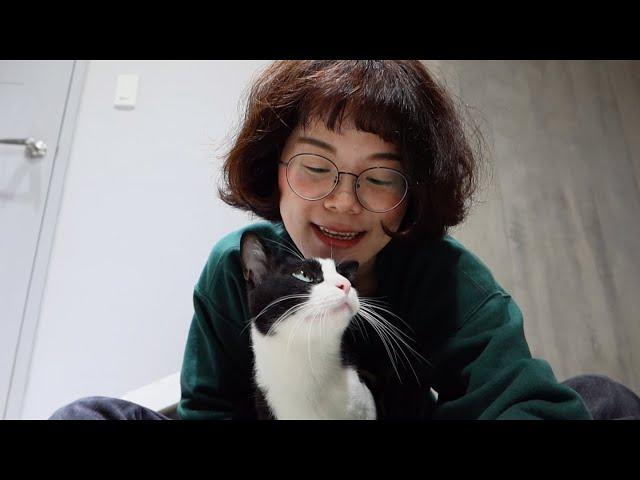 如何養一隻快樂的貓 —狩獵與逗貓