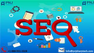 Get Best SEO Services in USA by PNJ Sharptech