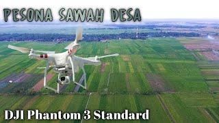 Ngabuburit Bareng Drone DJI Phantom 3 Standard || Pesona Persawahan Desa...