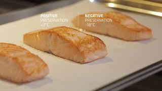 IRINOX | Salmon