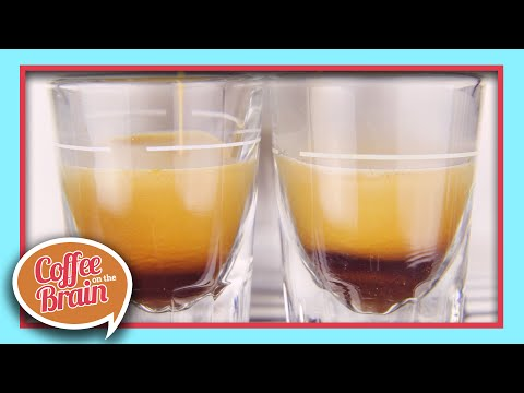 Arabica & Robusta Coffee Beans | Coffee On The Brain