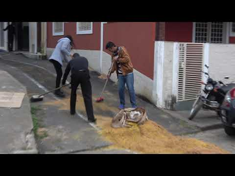 Católicos Fazem a Limpeza do tapete de pó de serra após a procissão 2019
