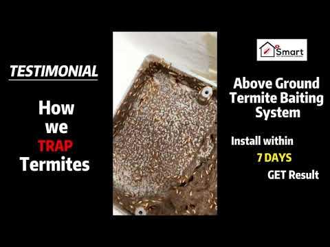 Testimonial Above Ground Termite Baiting System
