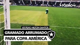 Copa América: Estádio Nilton Santos, do Botafogo, passa por reparos no gramado para Brasil x Chile