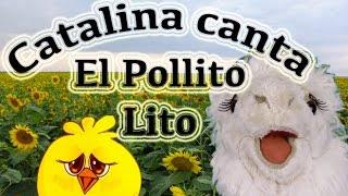 Pollito Lito por Catalina la alpaca- Videos educativos Infantiles-Episodio 6/10