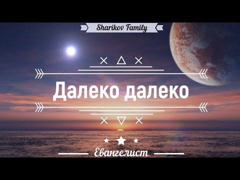 🎶 Далеко далеко - Sharikov Family   Песня
