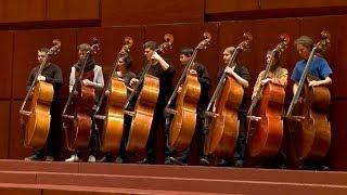 Die Deutsche Streicherphilharmonie -- 40 Jahre junge Spitzenklasse