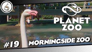 Endlich Flamingos #19 «» Morningside Zoo 🇳🇿🐅 - PLANET ZOO AQUATIK DLC   Deutsch German