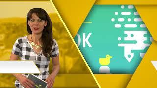 Programajánló / TV Szentendre / 2018.07.19.