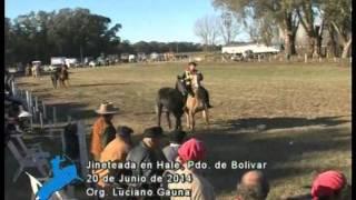 preview picture of video 'Broche de Oro en Hale, Pdo. de Bolviar, Bs. As.'