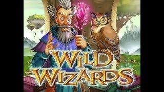 Big Win On Wild Wizards (RTG Slot)