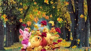 🍂🌬🍂Spiel mit dem Herbstlaub😄playing with the autumn leaves 🍃 WhatsApp Status✔
