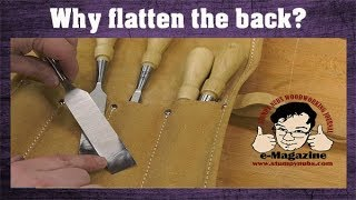 The biggest sharpening mistake woodworkers make (And why...)