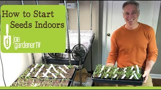 How I Start Seeds Indoors  Tips & Techniques