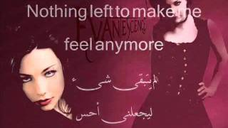 Evanescence Anything For You.FLV