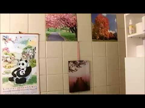 WC Dekoration DIY und kleine Frage
