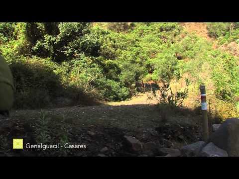Der Große Wanderweg Málagas. Etappe 28: Genalguacil – Casares (Deutsch)