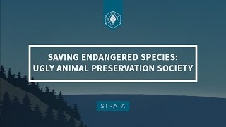 Saving Endangered Species: The Ugly Animal Preservation Society