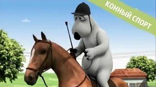 БЕРНАРД: Конный спорт
