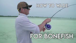 How To Wade Fish for Bonefish