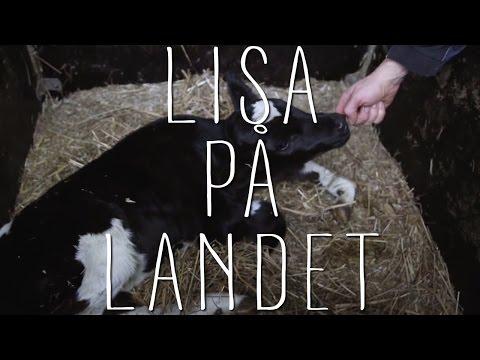 Dating sweden karlholmsbruk