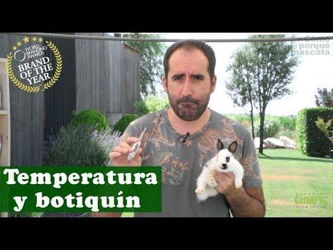 , title : 'CONEJO: Botiquín y medir temperatura de un conejo