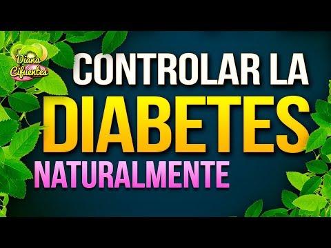 La recepción de aceite de comino negro para la diabetes