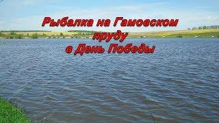 Рыбалка в гамово пермь
